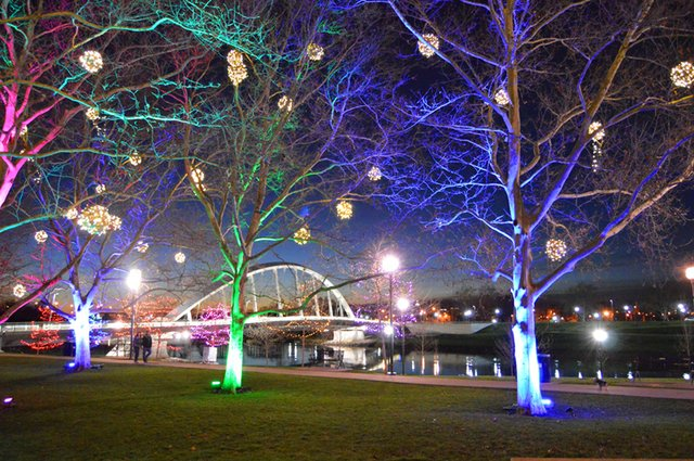 Christmas Lights Columbus Columbus Zoo Columbus